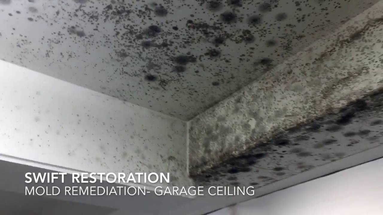 Mold remediation garage ceiling youtube mold remediation garage ceiling dailygadgetfo Gallery