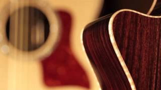Taylor Guitars 800 Series Guitar