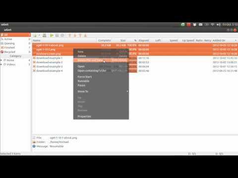 uGet Tutorial - Batch Downloading