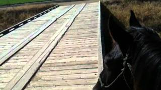 Dealing With Trains On Horse Or Horseback - Train Run Away - Part 2 Of 3 - Rick Gore Horsemanship
