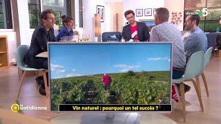 Vin naturel : pourquoi un tel succès ?