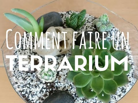 tutoriel comment faire un terrarium facile youtube. Black Bedroom Furniture Sets. Home Design Ideas