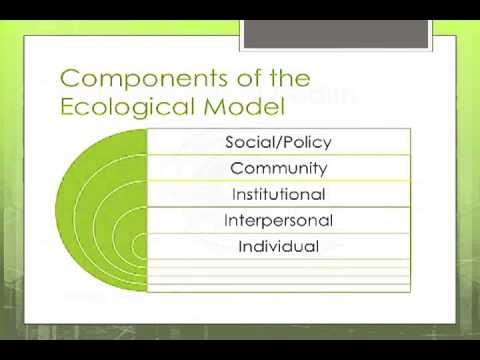 An Introduction to the Ecological Model in Public Health