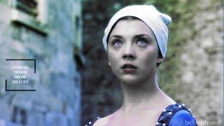 ♔ Anne Boleyn [ 19th May 1536] • The Big Sleep