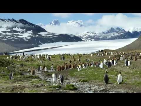 Norway, Spitsbergen, Iceland, Greenland & Antarctica
