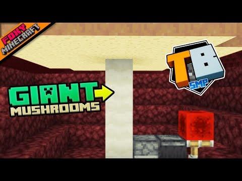 Giant Mushroom Farm   Truly Bedrock [1-40]   Minecraft Bedrock Edition SMP (MCPE / MCBE)