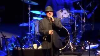 Van Morrison - Real Real Gone