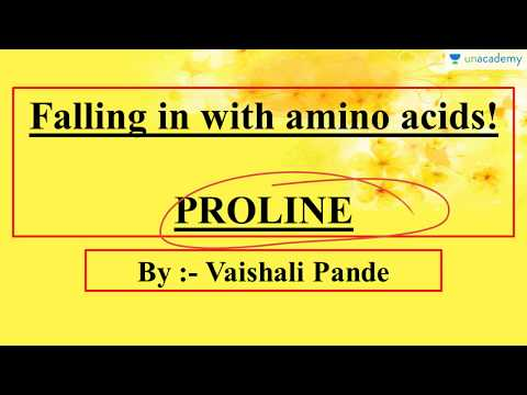 Amino Acids - Proline