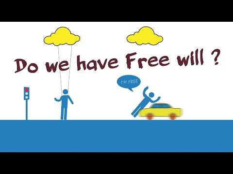 Do We Have Free Will ?