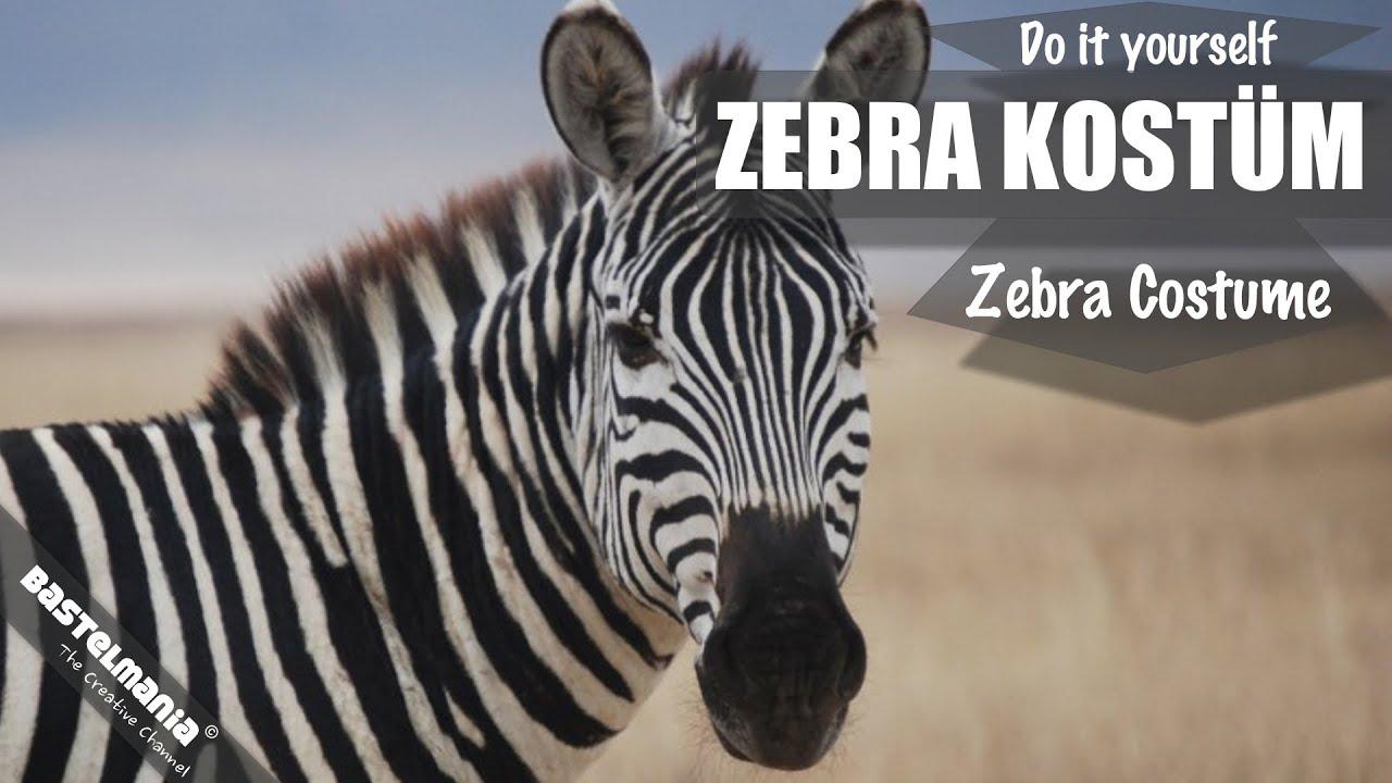 Karnevalskostüm Zebra Basteln Carnival Costume Zebra Tinker