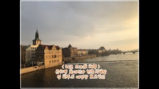 프라하 성 비투스 대성당 전망대 오르기! 근위병 교대식…