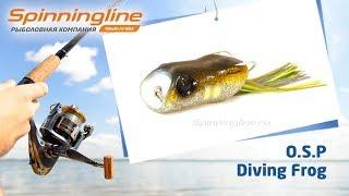 Лягушка O.S.P Diving Frog(Купить топвотер O.S.P Diving Frog https://spinningline.ru/diving-frog-c-38208_2_5684_74956.html Обзор лягушки O.S.P Diving Frog будет интересен к прос., 2016-10-07T11:54:30.000Z)