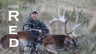 Bowhunting Free Range Red Stags In New Zealand, CODE RED.