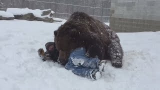 Huge Bear Grabs Man & Pulls Him Down. But When Bear Leans Over- It's Not What You Think