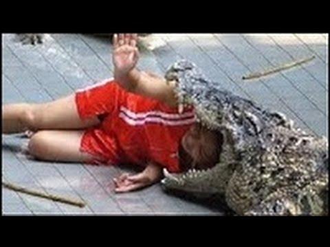 Extreme animal attack photos: Lion mauls Australian man ...