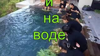 Часть №2. Обучение на волшебной природе Вьетнама.