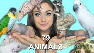 Meet All 79 Of My Pets