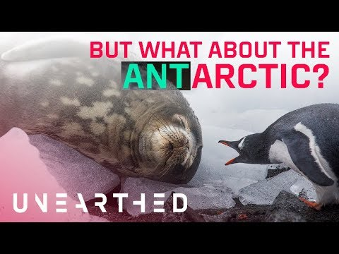 Antarctic ice melt: What's the difference?