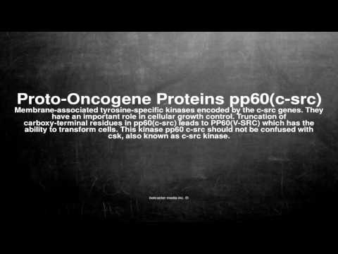Medical vocabulary: What does Proto-Oncogene Proteins pp60(c-src) mean