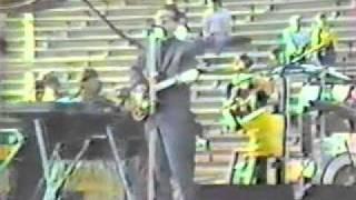 Elvis Costello - Green Shirt 1982