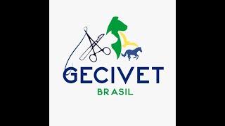 Conheça o Grupo de Estudo em Cirurgia Veterinária - o GECIVET Brasil