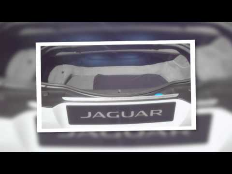 Lorraine Mckiniry at Jaguar Alive. 2012