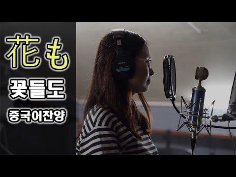 꽃들도(花も) 중국어 찬양+가사+한국어발음 - YouTube