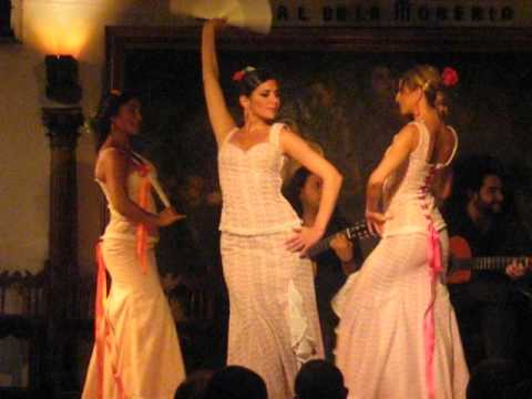 beautiful flamenco with fans