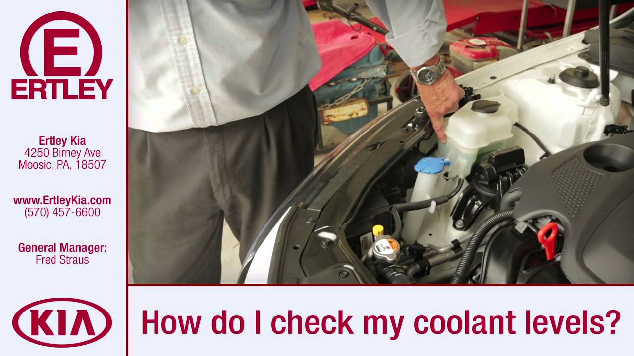 how to check your coolant level youtubehow to check your coolant level