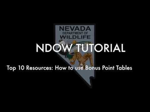 Top 10 Resources: How to Use Bonus Point Tables