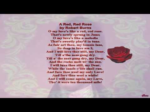 A Red Red Rose by Robert Burns (read by Tom O'Bedlam)