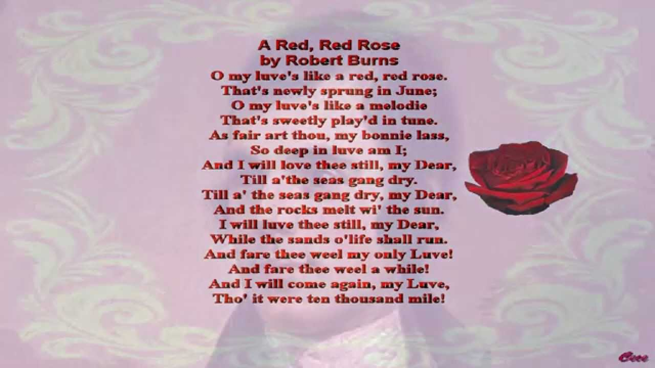 red red rose robert burns essay Robert burns' 'a red, red rose' celebrates eternal love in multiple ways this interactive quiz and printable worksheet can be used at any time to.