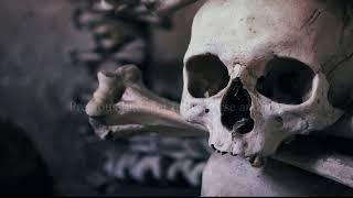 Drink Your Poison (Old Version) - Alternative Rock Lyric Video - Original Song