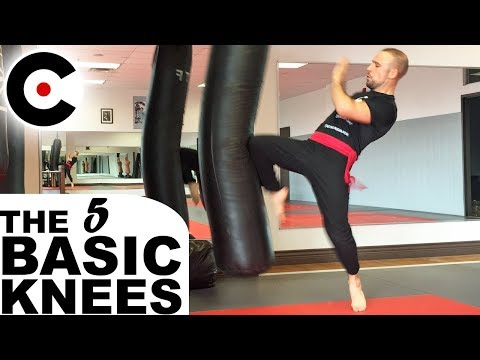 How to Strike with Knees - The 5 Basic Knee Strikes | Effective Martial Arts