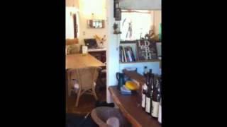 犬の宿 inunoieで看板犬のドナとお客さんの犬 レオンのやりとり.