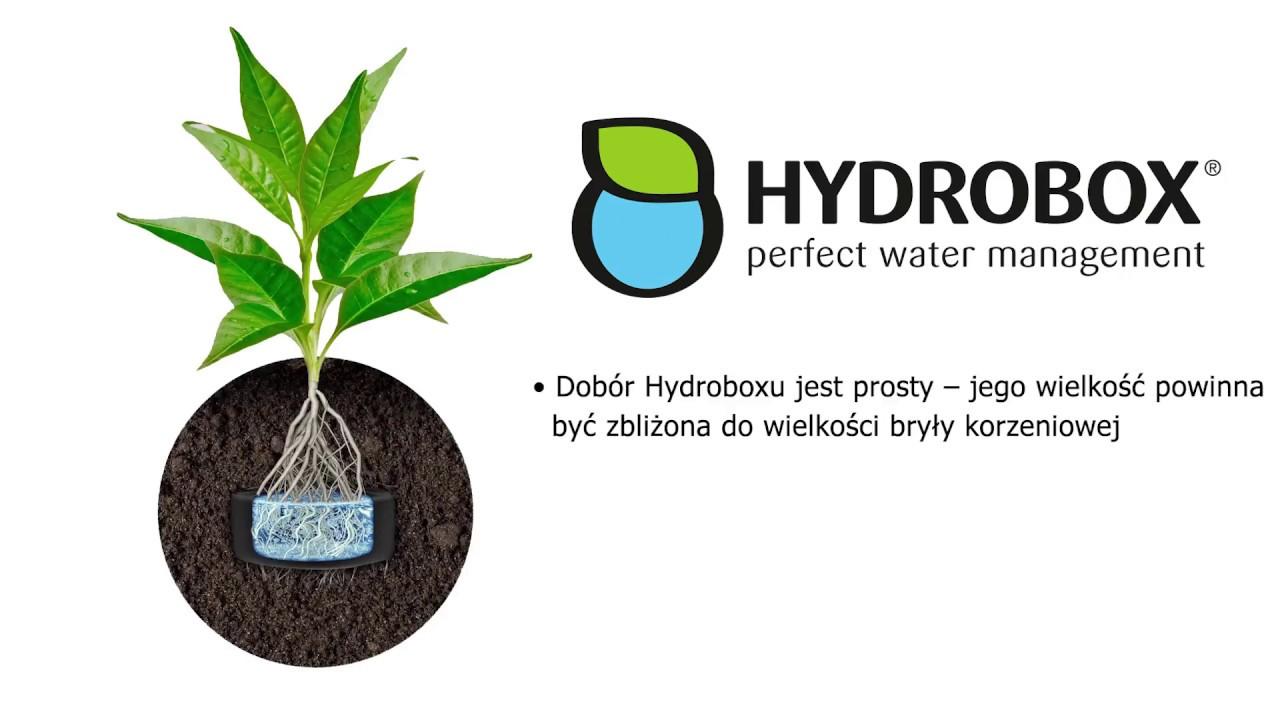 Jak Działa Hydrobox Hydrobox