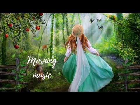 Morning Happiness music : ดนตรีผ่อนคลายยามเช้า เริ่มวันใหม่อย่างมีความสุข | Hit English Song |Mp3 Song Download | Full Song