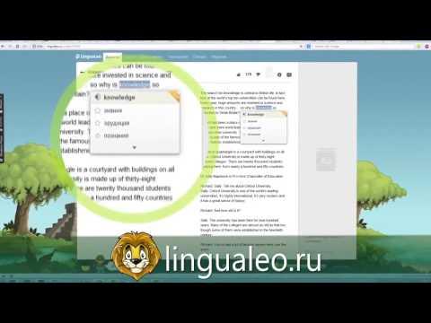 Обзор LinguaLeo в