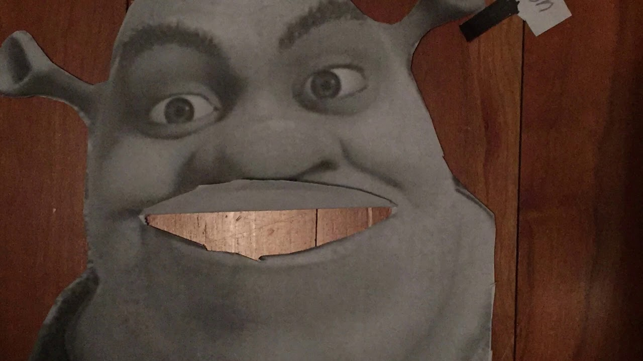 Awesome Big Chungus Shrek | Birkin Forever