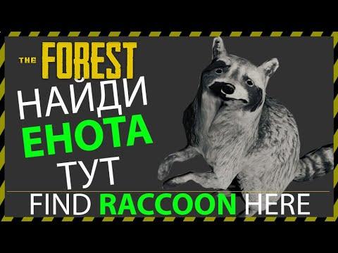 THE FOREST ГДЕ НАЙТИ ЕНОТА