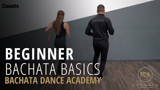 Bachata Beginner Basic Steps Tutorial - Demetrio & Nicole - Bachata Dance Academy