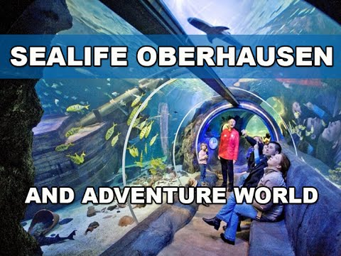 SEALIFE AND ADVENTURE PARK - OBERHAUSEN - GERMANY - YouTube