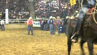 Video JS Video: College Rodeo - Bareback and Calf Roping April 2012 download MP3, 3GP, MP4, WEBM, AVI, FLV Juni 2018