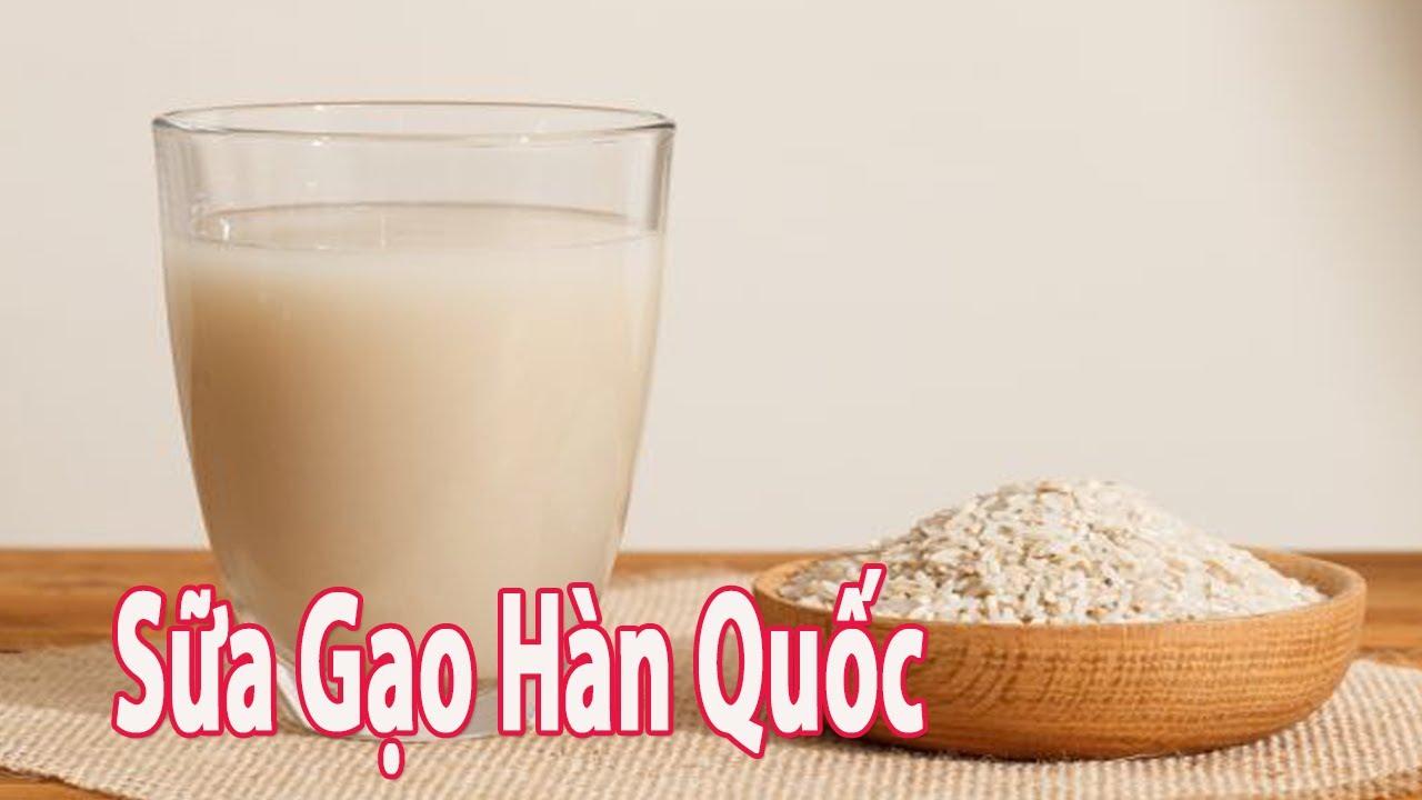 Cách Làm Sữa Gạo Hàn Quốc – Thơm Mát – Đẹp Da | Góc Bếp Nhỏ