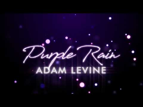 Adam Levine - Purple Rain (Lyrics)