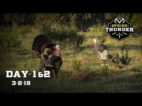 Opening Day Gobbler At 7 STEPS! | Osceola Turkey Hunt From South Florida | Spring Thunder