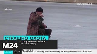 Рыбаки вышли на лед Чертановского пруда в плюсовую температуру - Москва 24