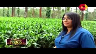 Flavours of India: Tea Plantations Enroute Gudalur  | 11th October 2013