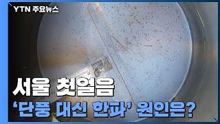 [날씨] 서울 첫얼음...'단풍 대신 한파' 원인은? …