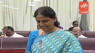 Telangana Legislative Council LIVE | TS Assembly Budget Session 2019 | Harish Rao  LIVE